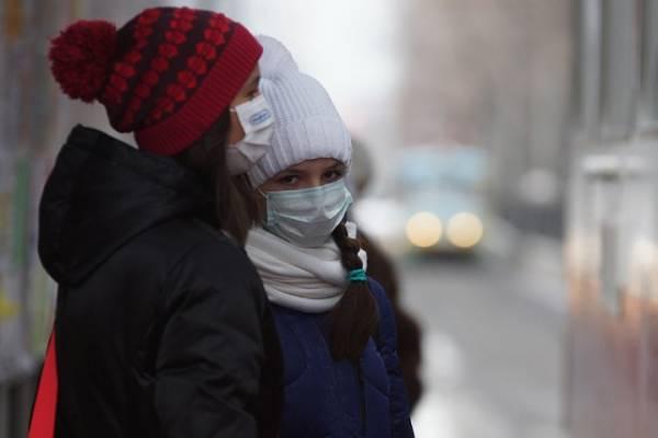 Свиной грипп A (H1N1) в Беларуси 2016: на 1 февраля эпидемии нет, заболели только 38 человек - официальные данные от санитарного врача Гаевского