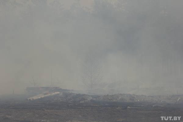 Профессор Бандажевский: пожар на Ольманских болотах распространяет радиацию на всю Беларусь