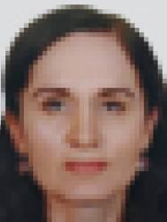 Мишина Людмила Францевна