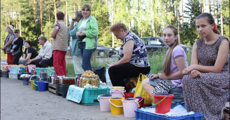 Загрязнение Беларуси радионуклидами. Медики не рекомендуют покупать овощи, ягоды, грибы, молочные продукты, дичь, рыбу с рук